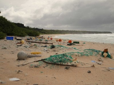Plastic debris covers much of the sand on Henderson Island.
