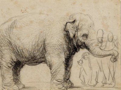 Rembrandt created this sketch of Hansken, an Asian elephant brought to Europe from Sri Lanka, in 1637.