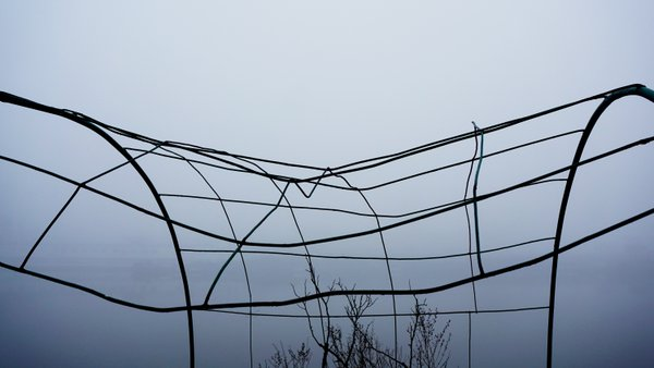 Wire structure located in harbor thumbnail