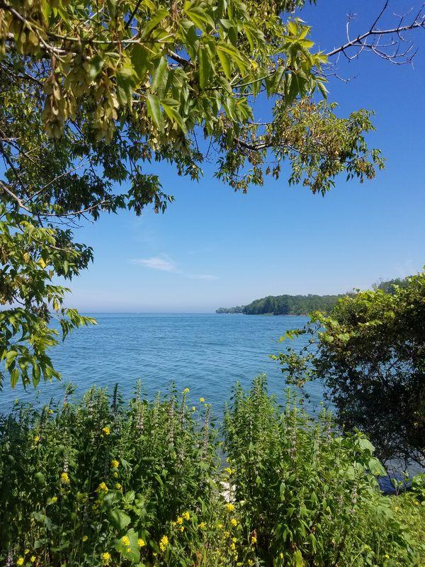 Lake Ontario at Golden Hill State Park thumbnail