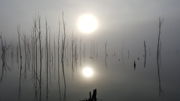 Hazy sunrise at the Manasquan Reservoir thumbnail