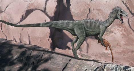 A speculative restoration of Australia's Cretaceous ceratosaur