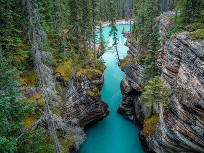 A man overlooks a canyon, filled with glacial meltwater from the surrounding mountains, near Athabasca Falls.