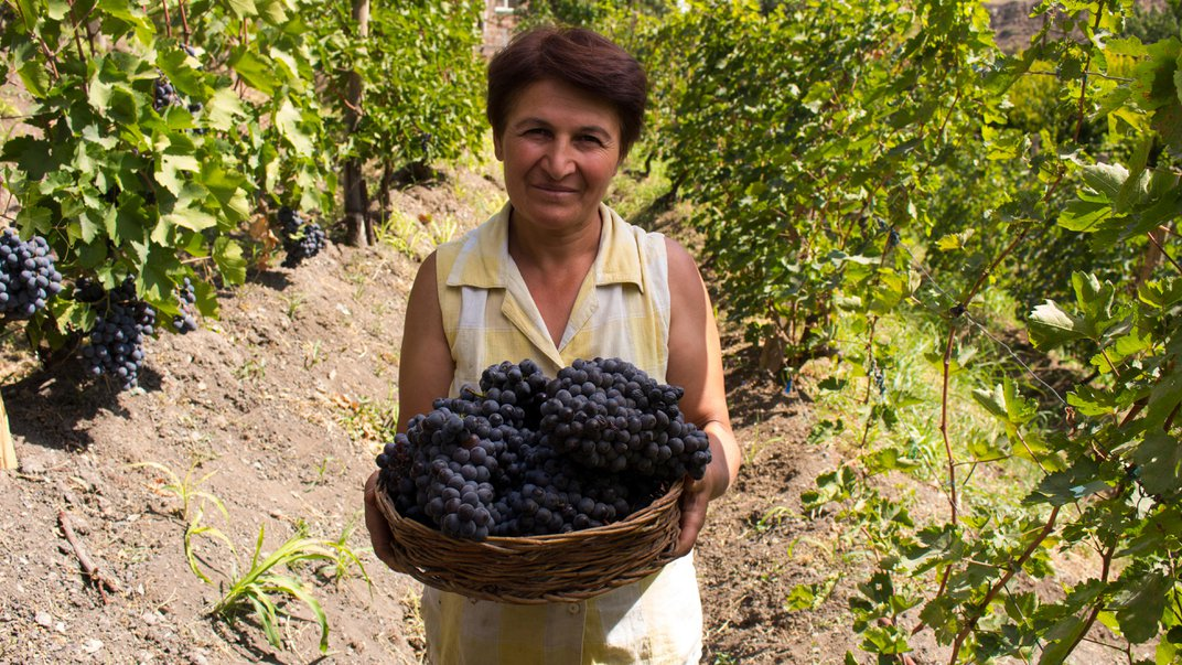 How Mobile Wine-Tasting Rooms Could Revolutionize Armenian Wine Country