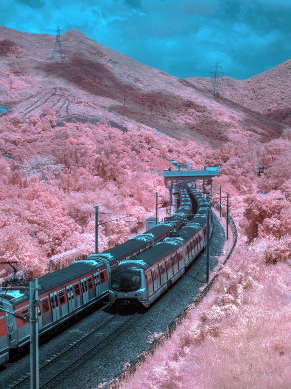 Trains to wonderland thumbnail