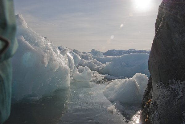 Icebergs from the Zodiac thumbnail
