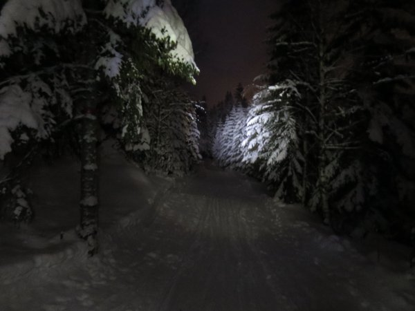 Skiing in the dark thumbnail