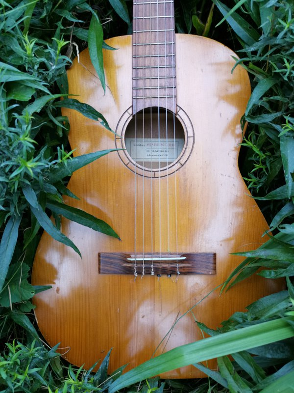 Classical guitar lying between green leaves thumbnail