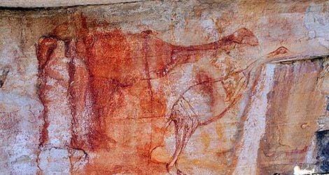 extinct-bird-human-evolution-australia.jpg