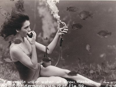 A mermaid eats an apple at the bottom of the (artificial) sea in this late 1940s postcard.