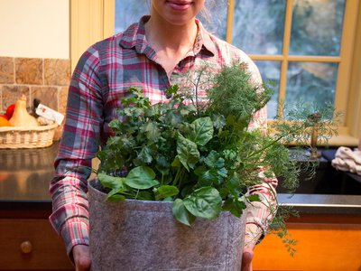 Seedsheet bills itself as the best way to know where your food comes from by allowing you to grow it yourself. The container gardens come with pre-selected plants that can spice up a salad, garnish a cocktail or fill a taco.