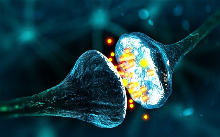 Could This Brain Implant Stop Epilepsy Seizures?