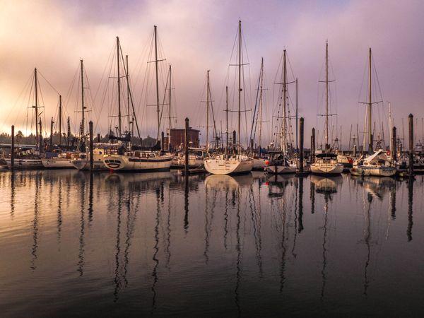 The Docks thumbnail
