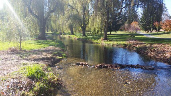 The Beauty of Cedar Creek Park thumbnail