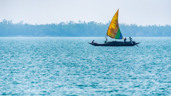 COUNTRY BOAT IN THE SUNDERBANS thumbnail