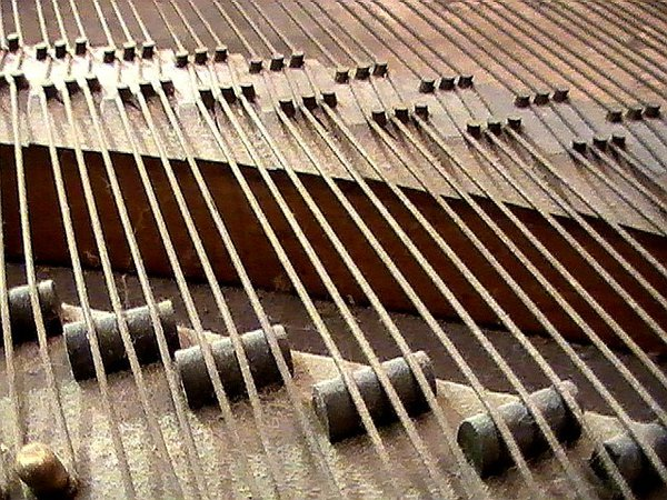 The strings in a baby grand piano thumbnail