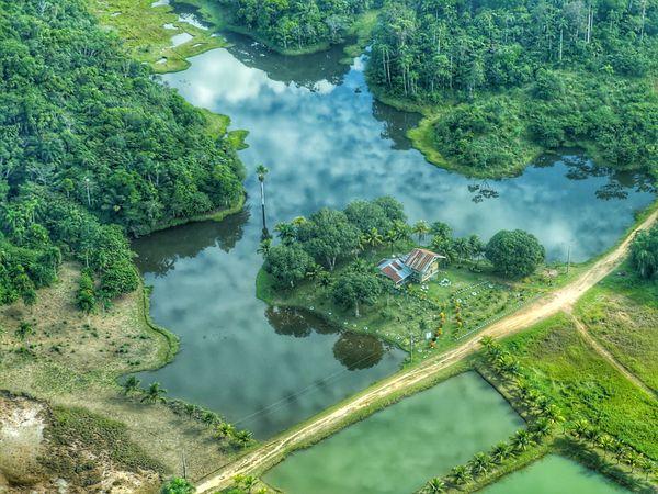 Sobrevoando a Amazonia thumbnail