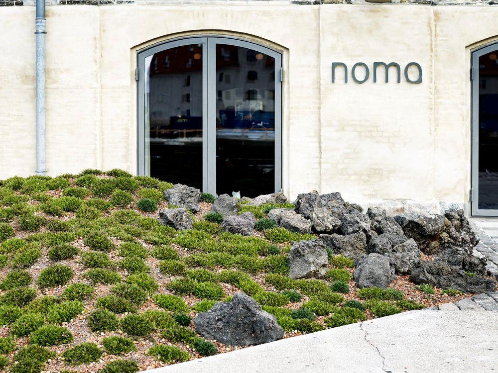 Noma outside