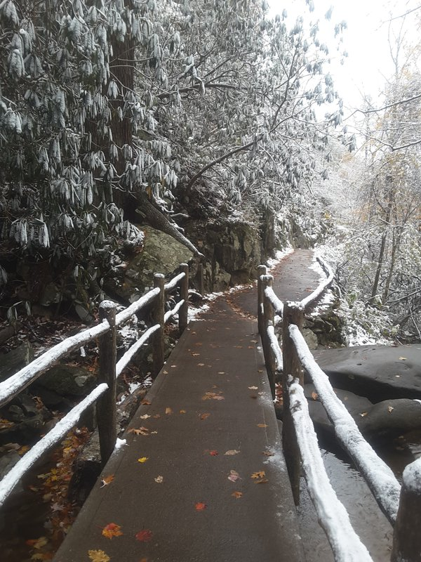 Laurel Falls bridge thumbnail