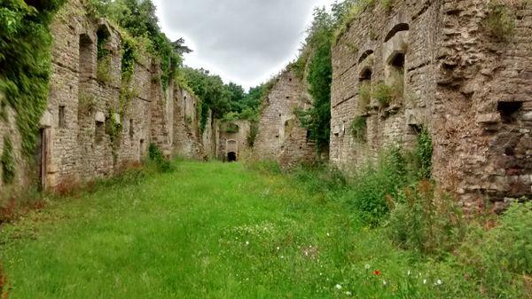 Overgrown Fortress Walls thumbnail