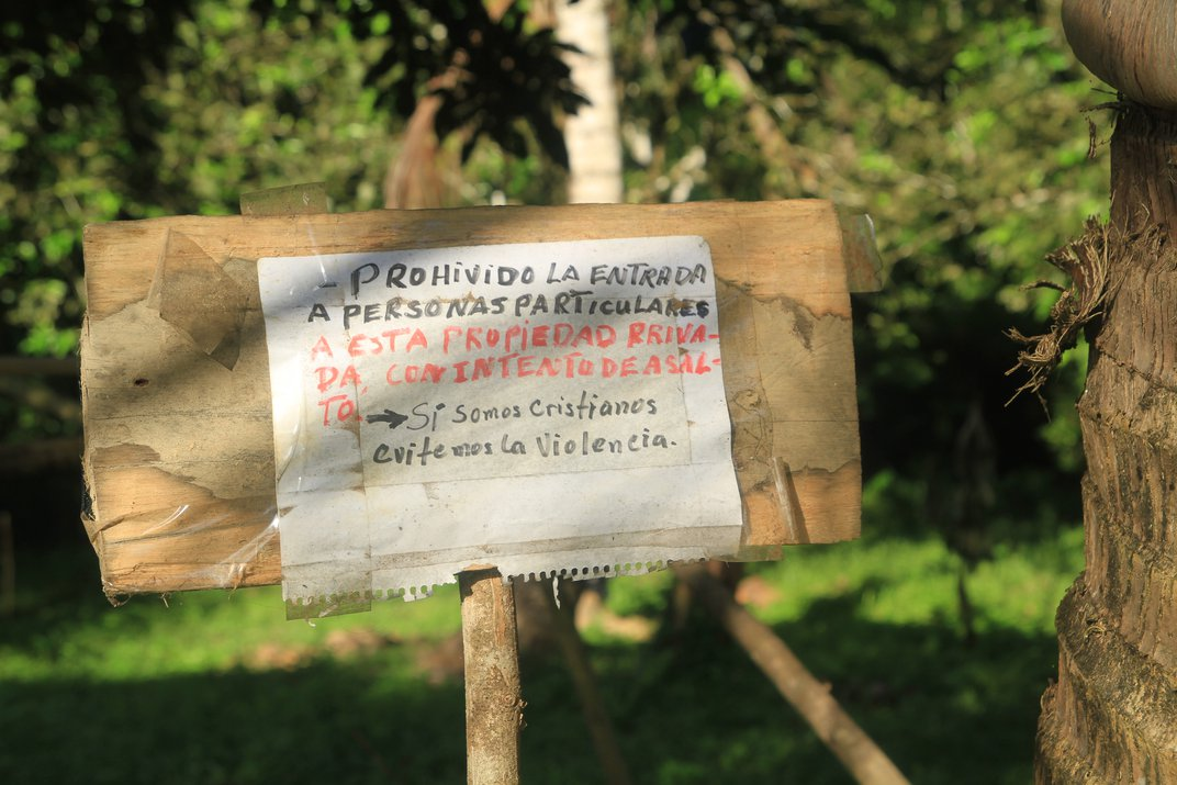 As Drug Traffickers Move In, Tropical Forests Fall
