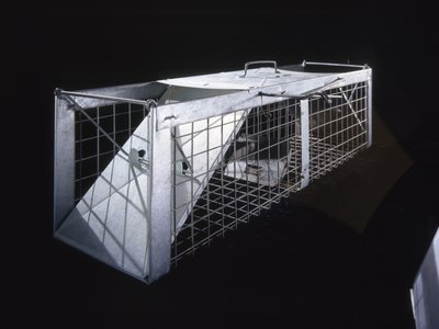 A pigeon trap, on view at the Air and Space Museum, used by Nobel Prize winners Penzias and Wilson to remove the birds roosting in the radio antenna's large horn.