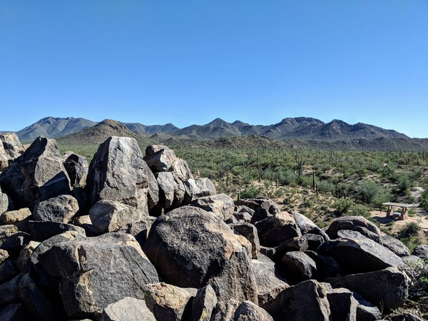 Signal Hill petroglyphs at Saguaro National Park, Arizona thumbnail