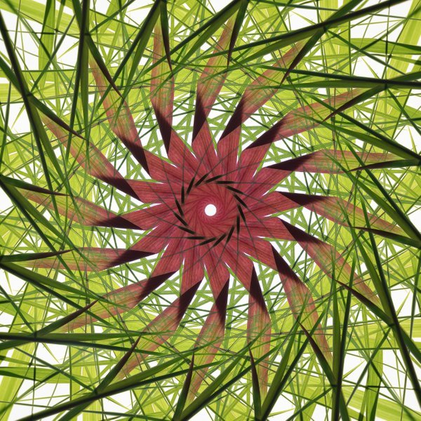 Mandala with Ornamental Grasses thumbnail