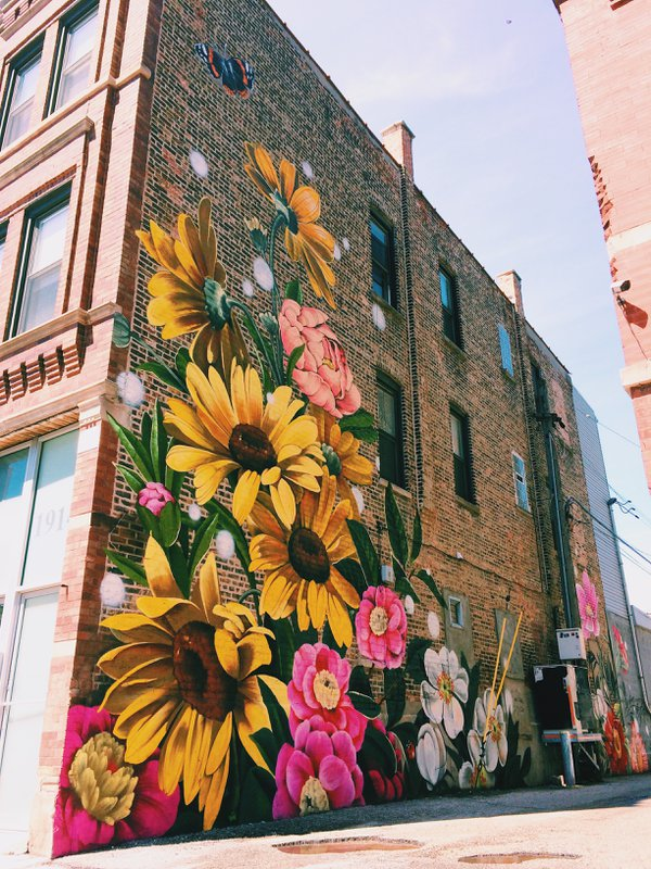 A floral mural in a Chicago alley thumbnail