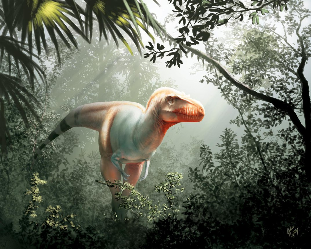 Newly Discovered Tyrannosaur Was Key to the Rise of Giant Meat-Eaters
