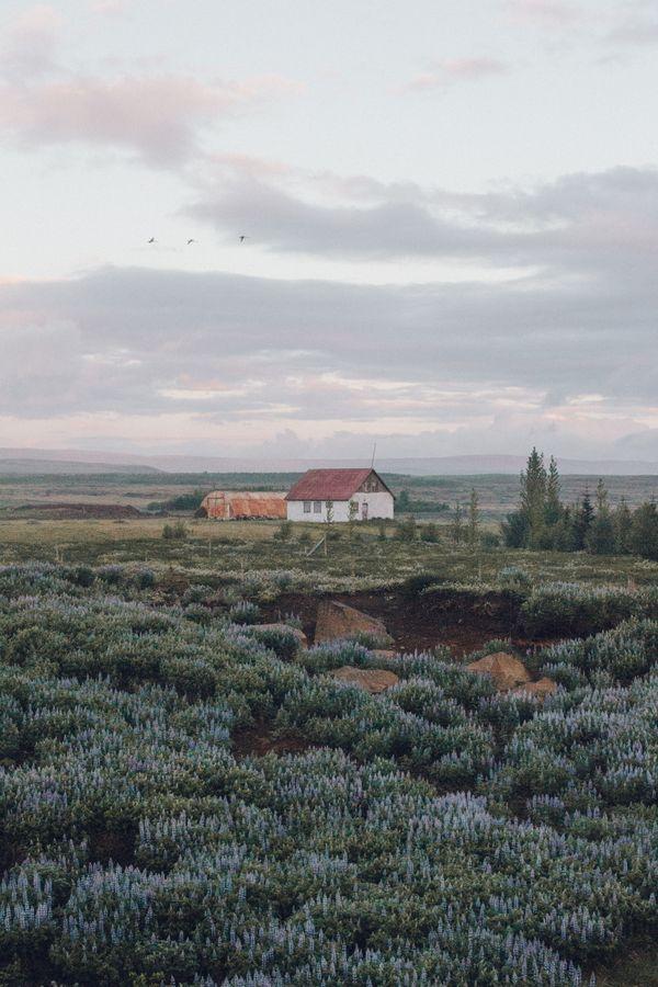 Quaint Icelandic farm thumbnail