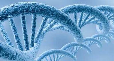 Genenomics-video.jpg
