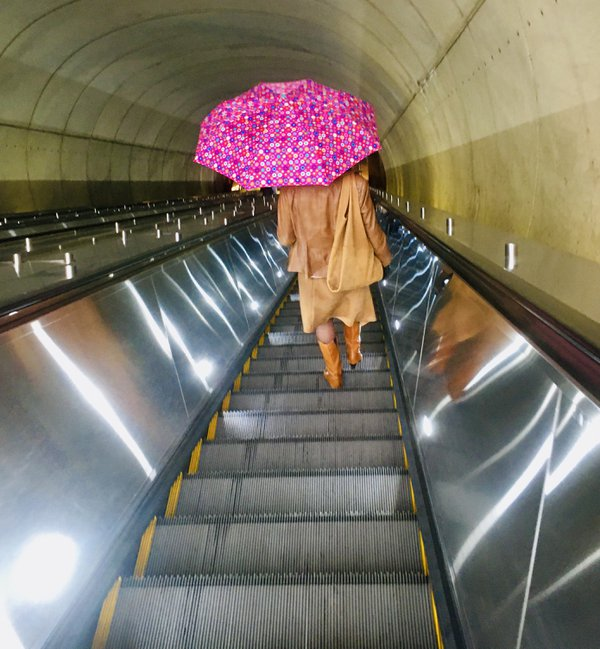 Lady with a Pink Umbrella thumbnail