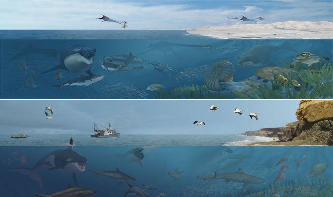 """""""Sea Monsters Unearthed"""" will immerse visitors underwater in both Cretaceous (top) and modern (bottom) ocean environments with vivid paleoart of life beneath the waves—courtesy of natural history artist Karen Carr."""
