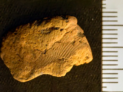 The find marks the first ancient fingerprint recorded at the Ness of Brodgar archaeological site.