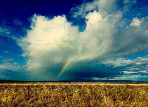 Rainbow Along the Highway thumbnail