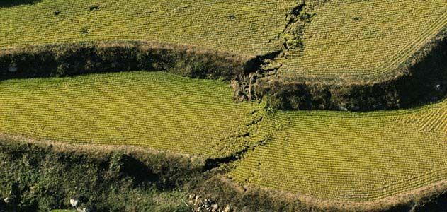 earthquake-631.jpg