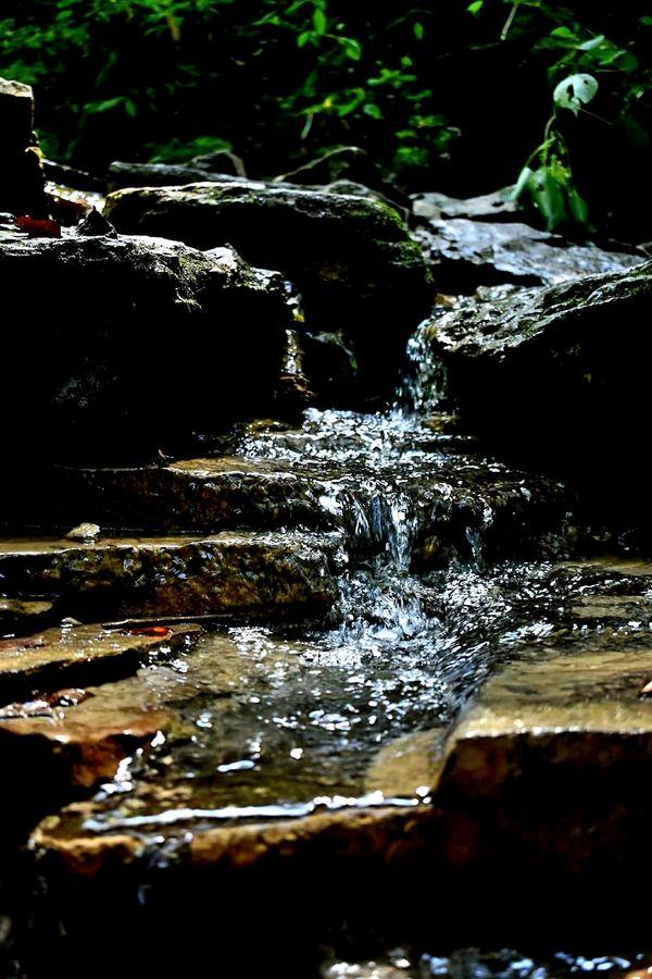 Water running through boulders in a creek thumbnail