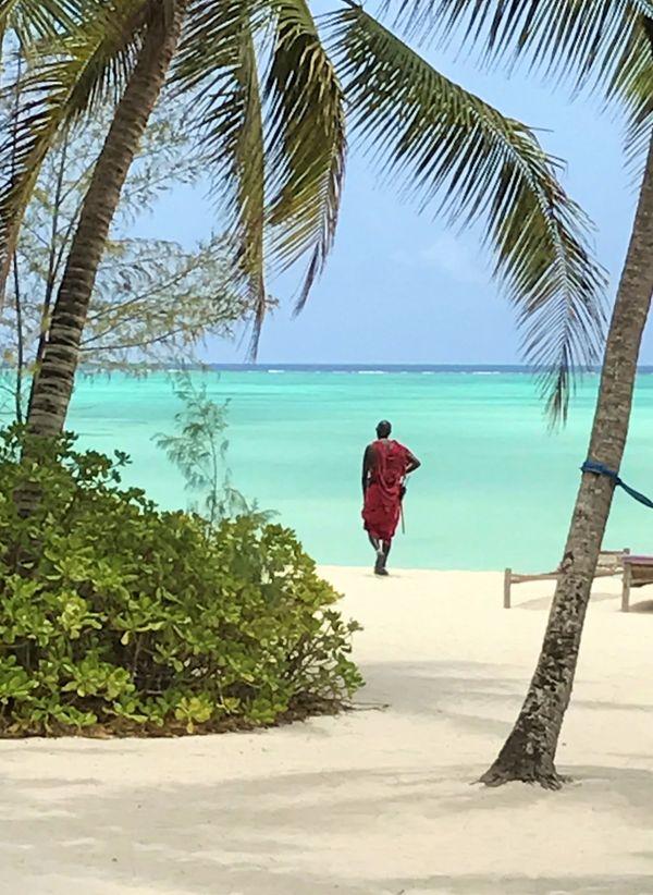 Maasai Warrior On The Beach thumbnail