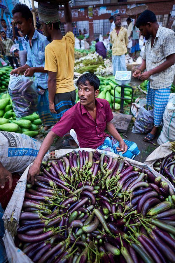 Eggplant thumbnail