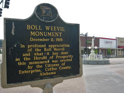 The historical marker in Enterprise, Alabama describing the significance of the statue.