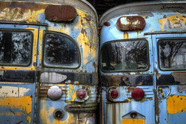 School Bus thumbnail