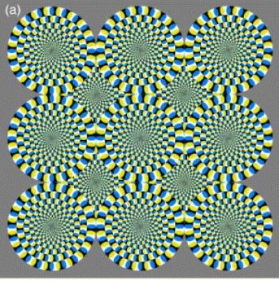 20110520104030rotatingsnakes.jpg