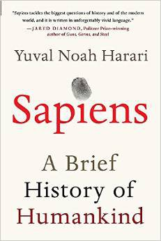 Preview thumbnail for Sapiens: A Brief History of Humankind