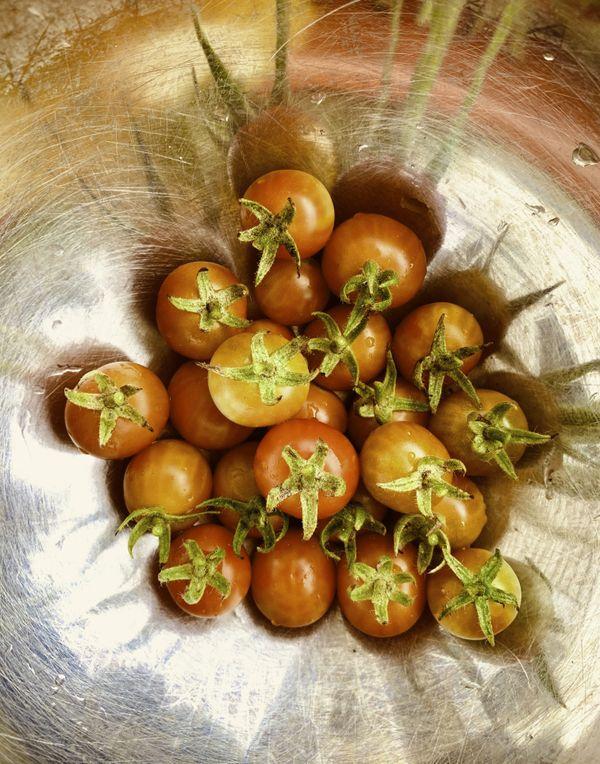 A cherry tomato bowl thumbnail