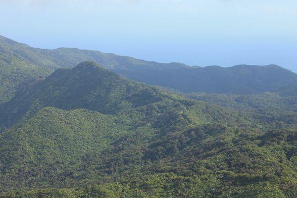 The view at El Yunque Peak. thumbnail
