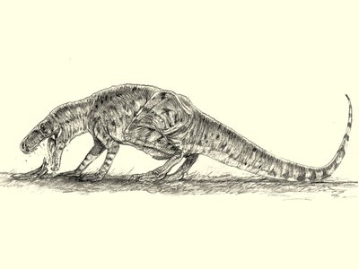 By analyzing fossilized vomit and droppings, scientists have determined that Smok wawelski was one of the first predators to crush the bones of its prey.