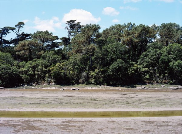 The Ster of Lesconil at low tide thumbnail