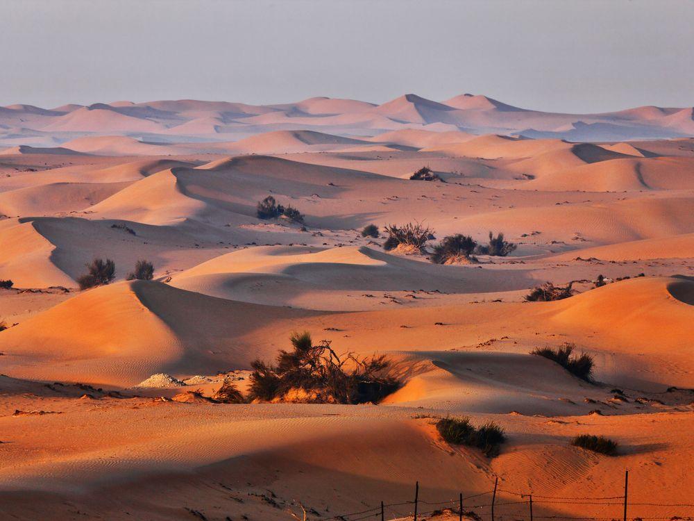 Sand dunes in Arabian desert