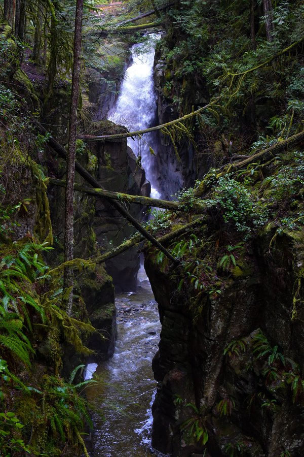 A waterfall in BC's temperate rainforest thumbnail